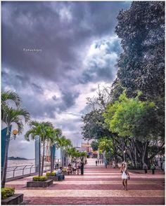Serie #parques  #guayaquil #Ecuador #AllYouNeedIsEcuador #iPhoneonly #ProyectoEcuador2017 #photo
