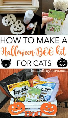 Halloween BOO kit for Cats! /walmart/ #BOOItForward #PawfectBOO #CollectiveBias #ad