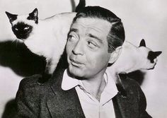 Peter Lorre with Siamese cats. Boy, their type has changed a lot over the years.
