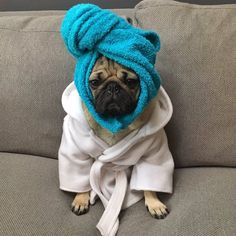 I sit in my towel and wait until the last possible minute to get ready