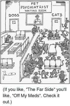 Funny animal quotes, funny animals, in laws humor, far side cartoons, cats Far Side Cartoons, Far Side Comics, Funny Cartoons, Funny Cats, Funny Animal Quotes, Funny Animals, In Laws Humor, Psychology Humor, The Far Side