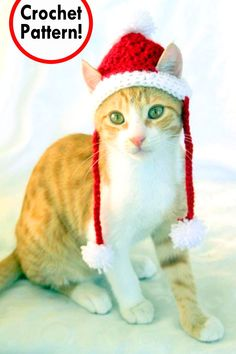 Santa Cat Hat Crochet Pattern, Fun and Festive Christmas Crochet Pattern for Cats and Kittens, Quick and Beginner Friendly Crochet Dog Hat Free Pattern, Crochet Santa Hat, Crochet Christmas Hats, Crochet Cat Hats, Holiday Crochet, Crochet Ideas, Christmas Animals, Christmas Cats, Funny Animals