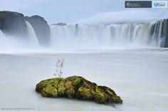Haarberg Orsolya: Az istenek vízesése /Waterfall of the gods