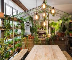 Pantone has collaborated with Airbnb to fill a London home with planting and projects that match its 2017 colour of the year. The home features a dining room greenhouse, a bedroom with mown lawn flooring and a bathroom filled with tropical plants all. Color 2017, Color Of The Year 2017, Botanical Interior, Pantone Greenery, Indoor Greenhouse, Deco Nature, Simple Interior, Interior Design, Plant Design