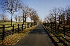 Black wood Fences & Long driveways