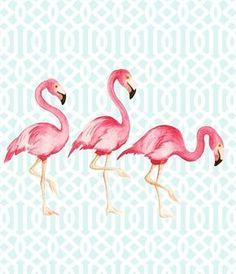 poster flamingo                                                                                                                                                      Mais