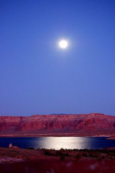 So beautiful. My favorite place in the world. This picture makes me so happy Lets Run Away, Sun Bum, Lake Powell, Amazing Nature, Moonlight, Amazing Photography, Wander, Places Ive Been, Utah