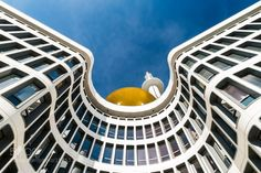 White doven with golden beak by loic_vendrame #architecture #building #architexture #city #buildings #skyscraper #urban #design #minimal #cities #town #street #art #arts #architecturelovers #abstract #photooftheday #amazing #picoftheday