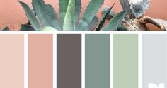 Happy Monday Everybody! So I have a color crush and it's been bad lately. Inspired by the desert blooms of cactus and succulents all I wan...