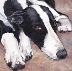 "Daily Paintworks - ""Black and White Greyhound"" - Original Fine Art for Sale - © Charlotte Yealey"