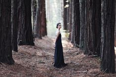 Into The Woods | by caitlin may photography