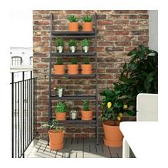 Växtpelaren formad som en dekorativ stege kan användas för att odla växter på höjden utomhus, på en balkong eller mot en vägg.