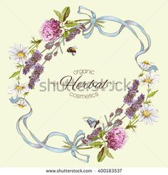 Vector vintage frame with wild flowers, herbs and ribbons..Design for herbal tea, cosmetics, beauty salon, natural and organic products. Can be used as greeting card,logo design or boho style element.