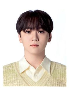 Wonwoo, Jeonghan, The8, Vernon, Id Photo, Boo Seungkwan, Hoshi Seventeen, Pledis Entertainment, Mug Shots