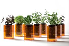 Grow Your Own - The Spacepot Hydroponic Grow System by Futurefarms