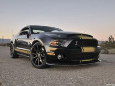 Shelby Mustang GT500 Super Snake 50th anniversary