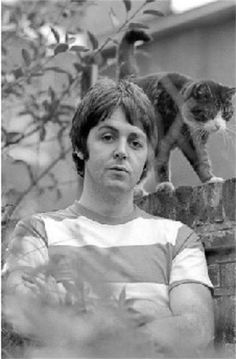 Paul McCartney and cat....This made my day. And I think it may have made my cats: Lennon and McCartney's too!