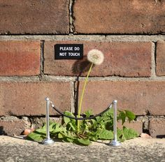 Humorous Street Signs and Other Contextual Street Art Interventions by Michael Pederson, Sydney