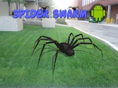 Spider Swarm is a fun game for Android. Spiders, Fun Games, Android, Animals, Cool Games, Animales, Animaux, Spider, Animal