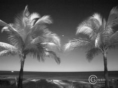Key West Infrared_clisso photo