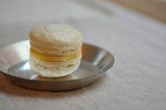 ++ Meyer Lemon Macarons