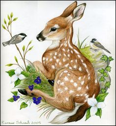Whitetail Deer Fawn and Black Capped Chickadees Prismacolor colored pencils on Bristol Yeah I had to kind of piece it together 'cause my scanner i. Fawn and Chickadees Animal Paintings, Animal Drawings, Art Drawings, Fawn Tattoo, Illustrations, Illustration Art, Deer Drawing, Scratchboard Art, Deer Photos