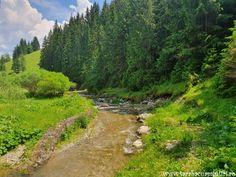 Prin Cheile Lucavei spre Herghelia Lucina   Taraba cu amintiri Drum, Country Roads, River, Outdoor, Outdoors, Drums, Rivers, The Great Outdoors