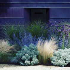Front Yard Landscaping 30 Fabulous Xeriscape Front Yard Design Ideas and Pictures - Awesome Indoor Farmhouse Landscaping, Modern Landscaping, Front Yard Landscaping, Landscaping Ideas, Backyard Ideas, Outdoor Landscaping, Landscaping Plants, Hillside Landscaping, Backyard Patio