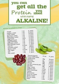 Protein Sources on an Alkaline Diet. for more info and resources on the Alkaline Diet. Free recipes, too! Acid And Alkaline, Alkaline Diet Recipes, What Are Alkaline Foods, Acidic Foods, Nutribullet Recipes, Cancer Fighting Foods, Foods That Cure Cancer, Cancer Cure, Pin On