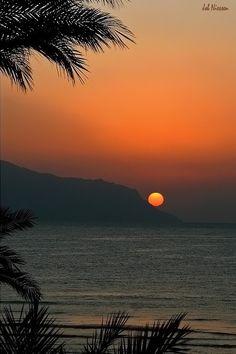 Red Sea (Egypt) by Job Niessen