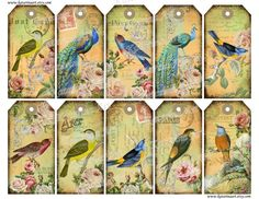 Bird Shabby chic french peacock printable gift Hang Tag. Whimsical Vintage birds   labels stickers. Digital Collage Sheet. k2231. $3.79, via Etsy.