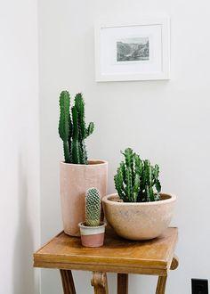 Cactus are IN! photo via sfgirlbay.com