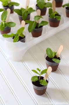 """PLANT DESSERT: chocolate mousse/pudding """"soil"""" + oreo crumbs """"dirt"""" + mint leaf """"plant"""" + wooden spoon """"plant labeller""""here"""