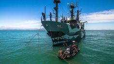 MarEx spoke to Captain Paul Watson, Founder of the Sea Shepherd Conservation Society, to get his views on misconceptions about the organization. http://maritime-executive.com/editorials/top-ten-misconceptions-about-sea-shepherd