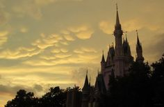 Beside wearing sunblock, consider these 15 tips for surviving Disney World during the summer. Learn the places throughout Disney World to cool down. Plus other general tips that helped past guests get through the Florida heat. At Magic Kingdom, head to Cool Ship counter service eatery and attached find a cooling station in Tomorrowland. Club …