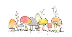 Like a wee village of mushrooms - so sweet.:
