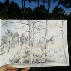 Pinetrees again  Excuse that I dont walk very far away..I stay in the nearby forest I just like it and draw there again & again. #pencilsketch #drawing #colourpencil #landscape #outdoorsart #pinetrees #artoftheday #instaart #asturias #landschaft #bleistift #bleistiftzeichnung #skizze #wildlifeart