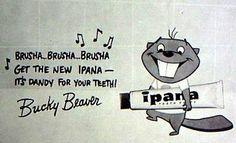 Ipana's Bucky Beaver designed by Tom Oreb