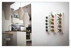 Flowerbox-Bean5, metalen houder met keramische potten, in diverse kleuren, om je planten aan de muur te hangen.