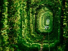 Ukraine, tunnel of love!!
