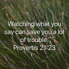 """Whoever guards his mouth and tongue Keeps his soul from troubles."" ‭‭Proverbs‬ ‭21:23‬ ‭NKJV‬‬"