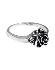 This is the purity ring I want to purchase later this year