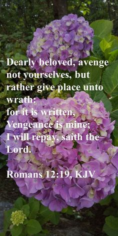 Dearly beloved, avenge not yourselves, but rather give place unto wrath: for it is written, Vengeance is mine; I will repay, saith the Lord. Romans 12:19, KJV Kingdom Of Heaven, The Kingdom Of God, Psalm 50 15, Precious Jesus, Justified By Faith, Christian Friends, Christian Devotions, Christian Encouragement, Begotten Son