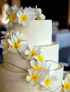 Frangipani cake-not exactly like this just cool to use frangipanis in some way