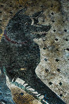 """Pompeii Mosaic: """"Cave Canem."""" Translates to """"Beware Dog."""""""