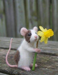Items similar to Needle Felted Pet Mouse, Custom Poseable Realistic Life Sized on Etsy The Animals, Felt Animals, Cute Baby Animals, Wet Felting, Needle Felting, Quilled Creations, Pet Mice, Felt Mouse, Cute Mouse