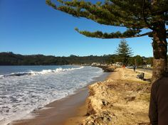 Buffalo Beach, Whitianga New Zealand North, Kiwiana, Buffalo, Island, World, Amazing, Beach, Places, Water