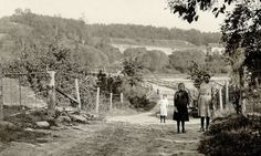 Picturesque view down an unnamed dirt road through the Humber River Valley. Photo by John Boyd, 1919. - Courtesy Toronto Public Library & Toronto Star Archives.