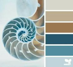 Living room color palette
