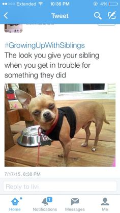 #growingupwithsiblings all the time
